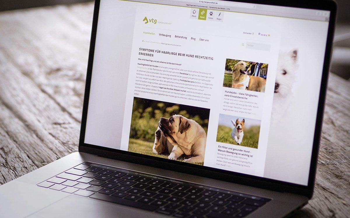 Blogbeitrag VTG-Tiergesundheit auf einem MacBook